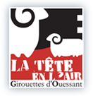 Logo t�te en l'air